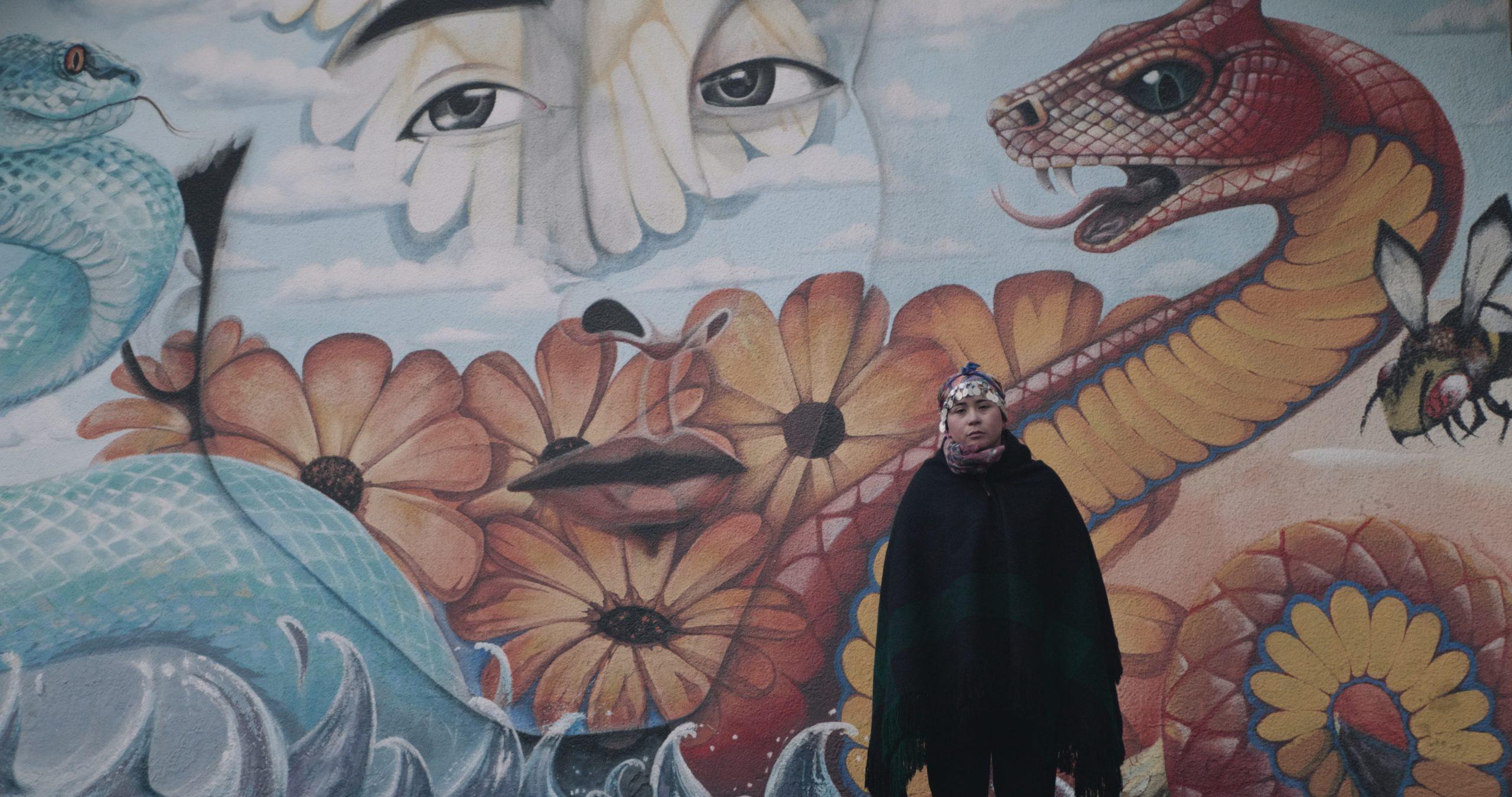 """Foto: """"Corre sangre mapuche"""", de Cristian Gómez Aguilar."""