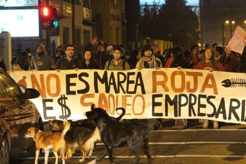 """""""No es marea roja, es saqueo empresarial"""". Foto del Observatorio Latinoamericano de Conflictos Ambientales (OLCA)"""